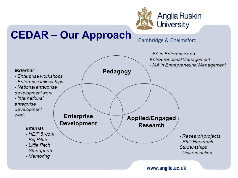 CEDAR – Our Approach Pedagogy Applied/Engaged Research Enterprise Development - BA in Enterprise and Entrepreneurial Management - MA in Entrepreneurial Management - Research projects - PhD Research Studentships - Dissemination Internal: - HEIF 5 work - Big Pitch - Little Pitch - StartupLab - Mentoring External: - Enterprise workshops - Enterprise fellowships - National enterprise development work - International enterprise development work