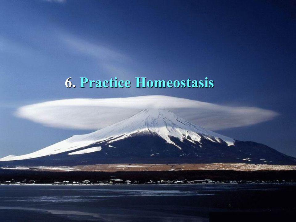 6. 6. Practice Homeostasis