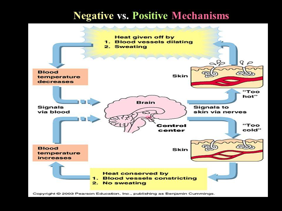 Negative vs. Positive Mechanisms