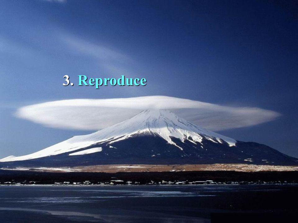 3. 3. Reproduce