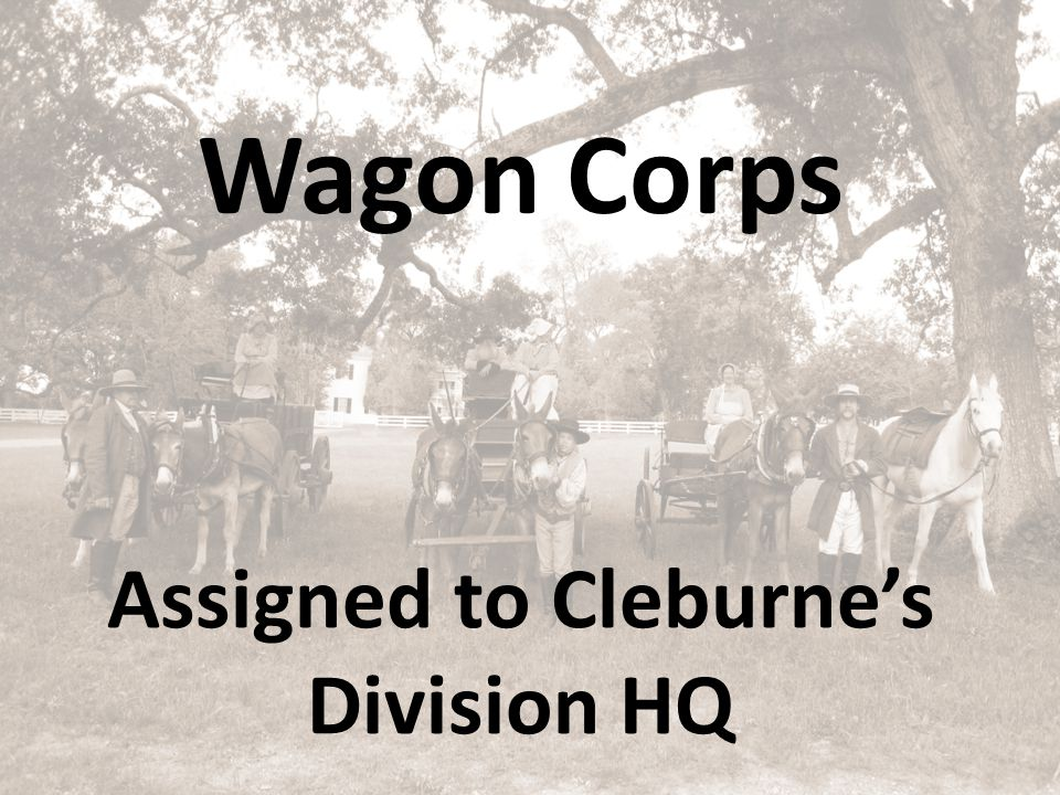 Assigned to Cleburne's Division HQ Wagon Corps