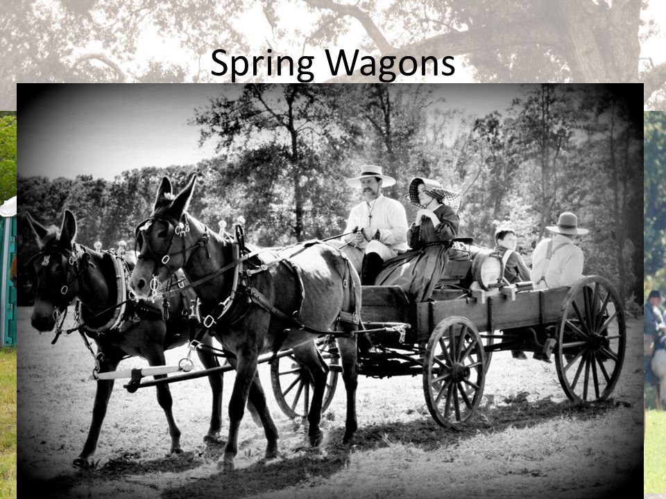 Spring Wagons