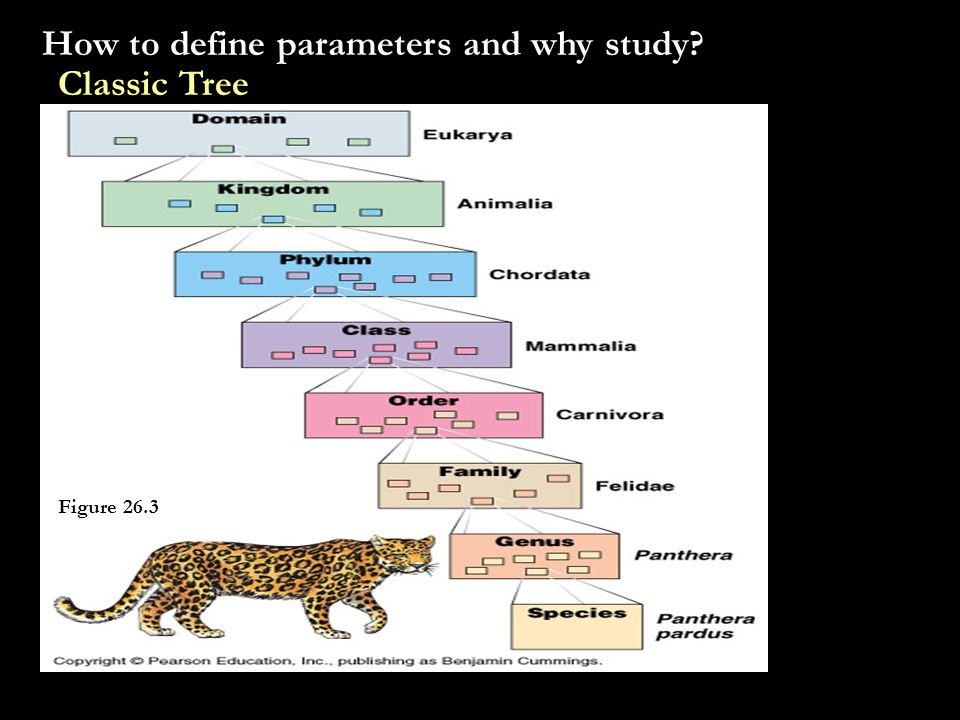 How to define parameters and why study Classic Tree Figure 26.3