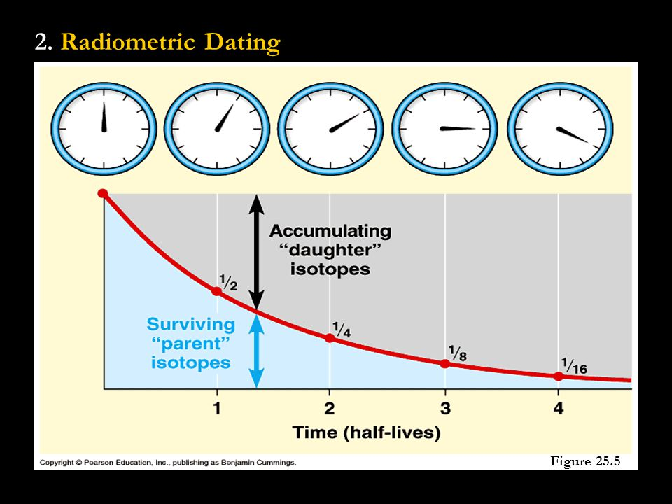 2. Radiometric Dating Figure 25.5
