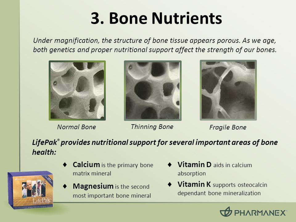 3. Bone Nutrients Normal Bone Thinning Bone Fragile Bone  Calcium is the primary bone matrix mineral  Magnesium is the second most important bone mi