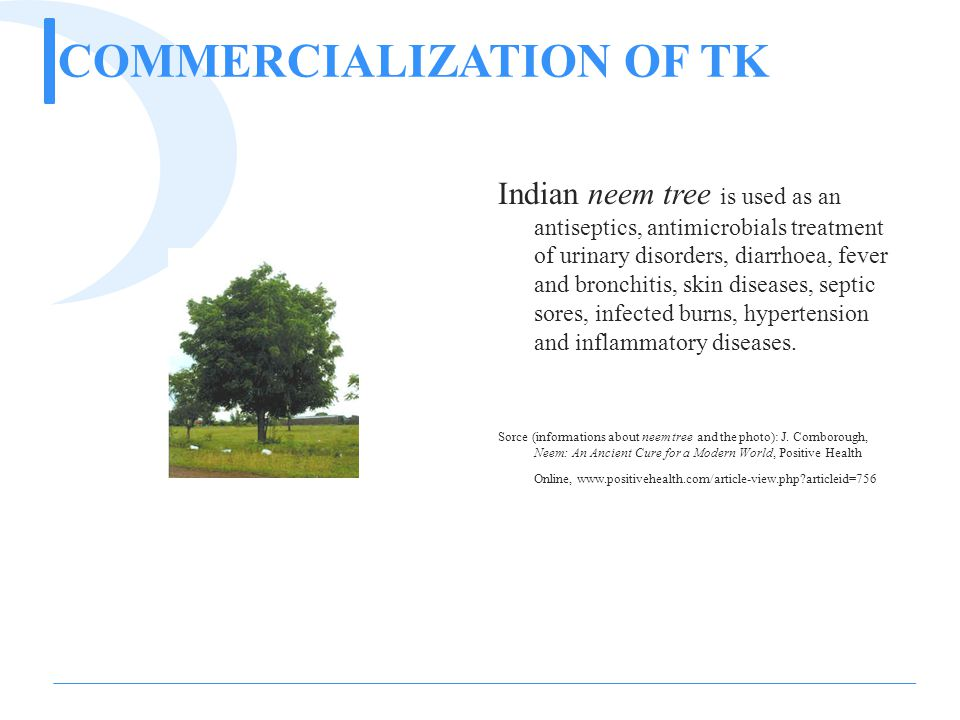 COMMERCIALIZATION OF TK Indian neem tree is used as an antiseptics, antimicrobials treatment of urinary disorders, diarrhoea, fever and bronchitis, skin diseases, septic sores, infected burns, hypertension and inflammatory diseases.