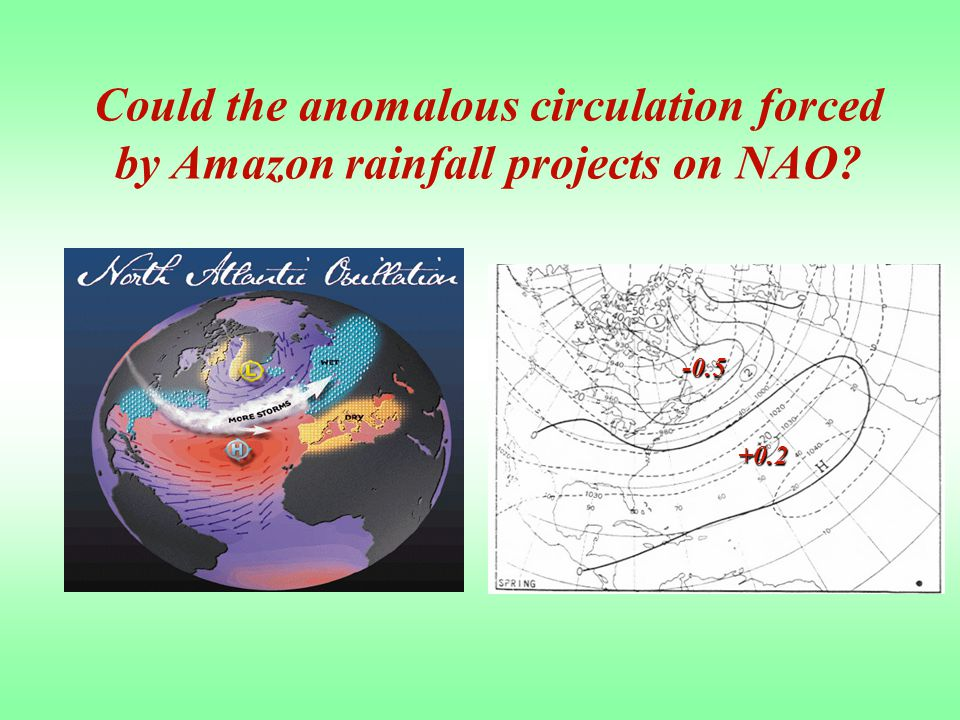 -0.5 +0.2 Could the anomalous circulation forced by Amazon rainfall projects on NAO