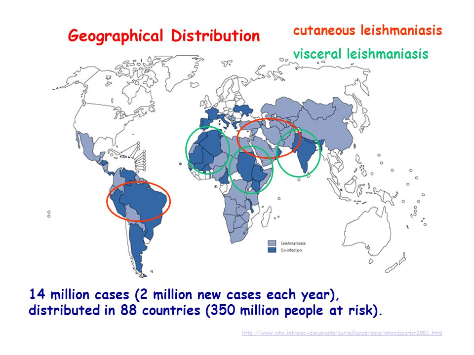 Geographical Distribution http://www.who.int/emc-documents/surveillance/docs/whocdscsrisr2001.html 14 million cases (2 million new cases each year), d