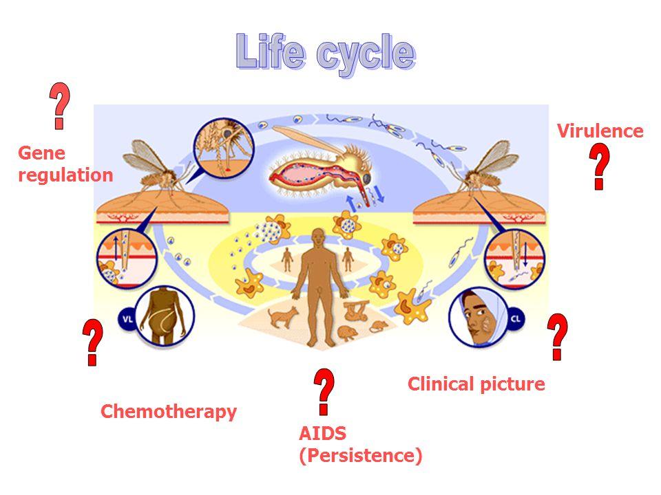 Sacks, David L.(2001) Cellular Microbiology 3 (4), 189-196.