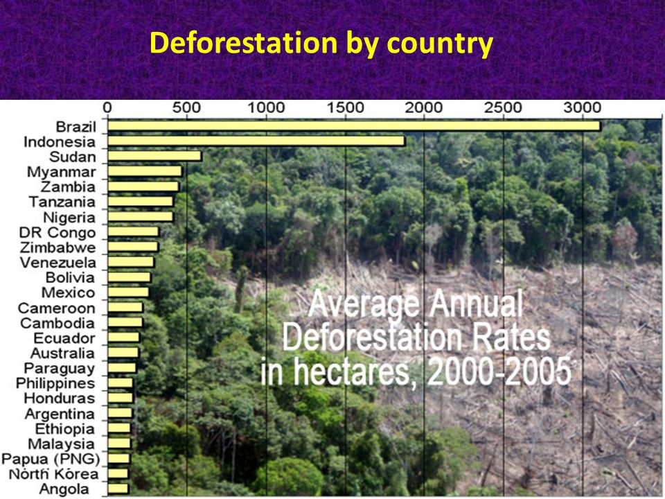Deforestation by country Main Causes: Cattle racnches Agriculture.