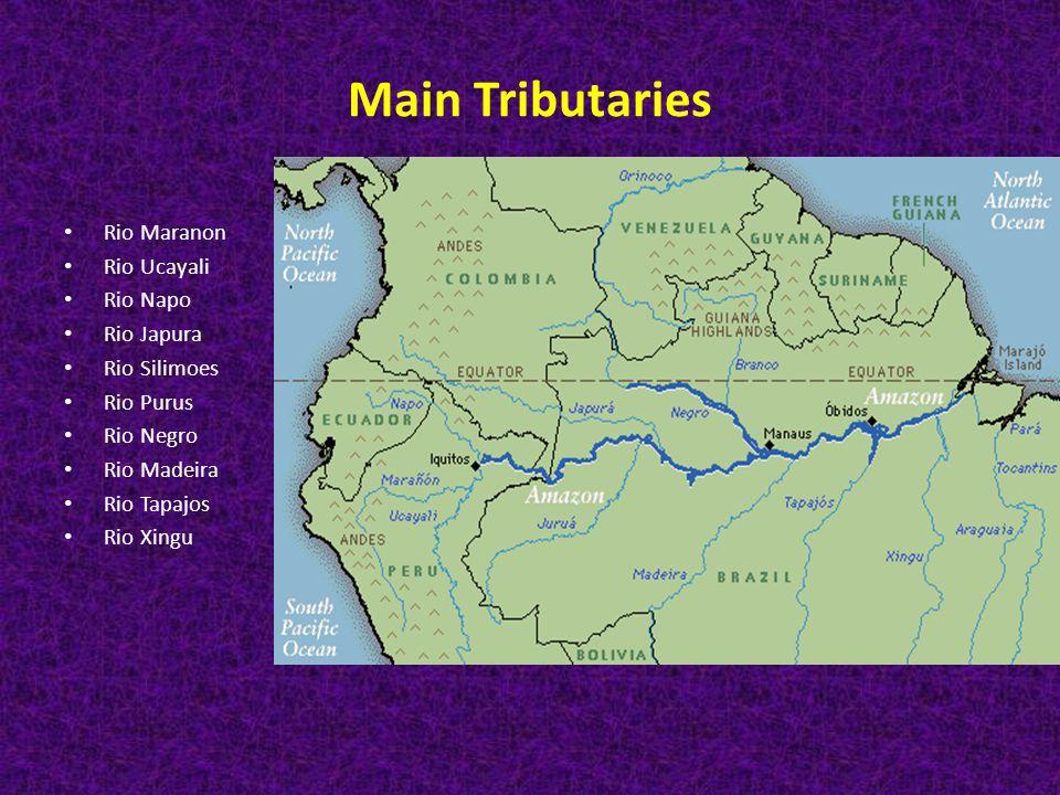Main Tributaries Rio Maranon Rio Ucayali Rio Napo Rio Japura Rio Silimoes Rio Purus Rio Negro Rio Madeira Rio Tapajos Rio Xingu