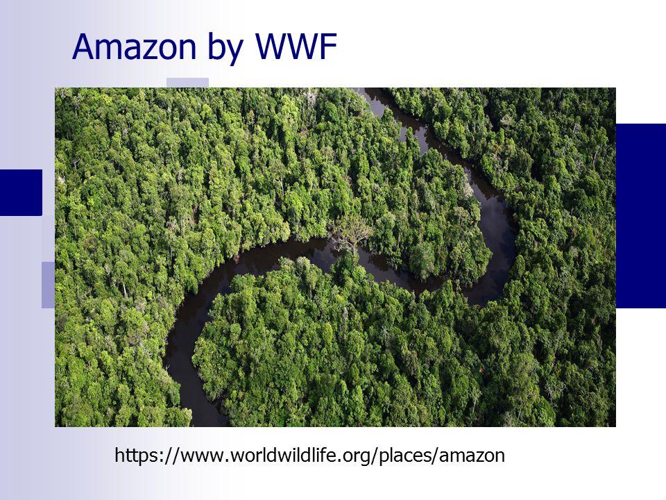 Amazon by WWF https://www.worldwildlife.org/places/amazon