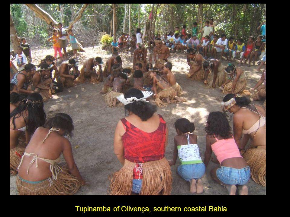 Tupinamba of Olivença, southern coastal Bahia