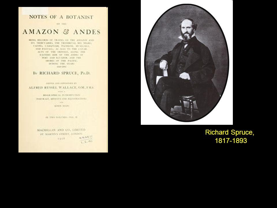 Richard Spruce, 1817-1893