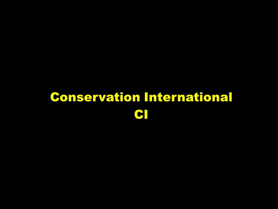 Conservation International CI