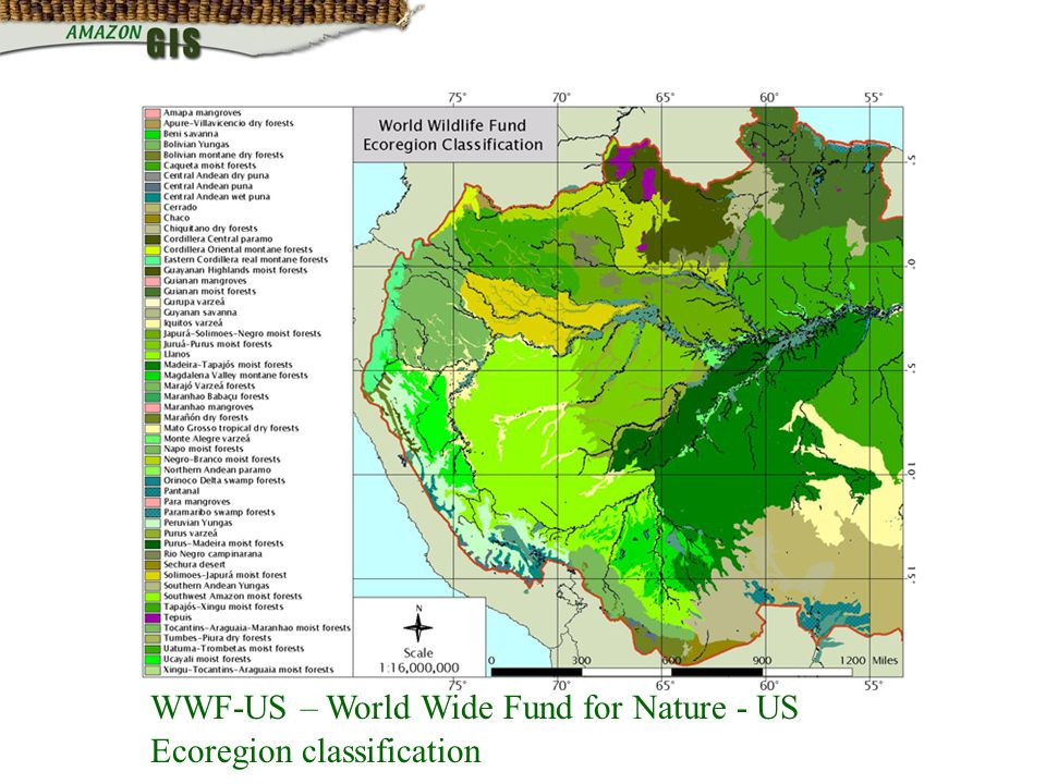 WWF-US – World Wide Fund for Nature - US Ecoregion classification