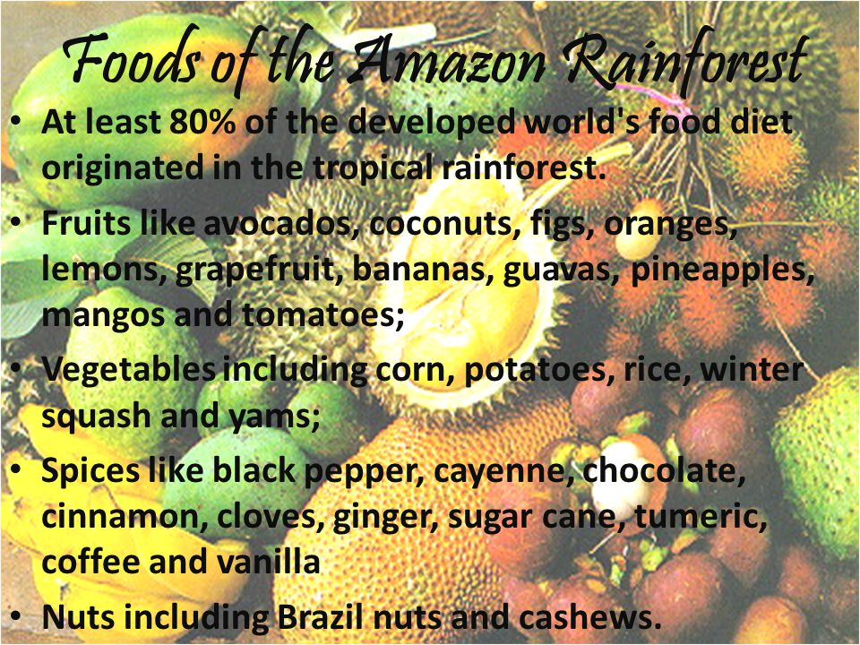 Foods of the Amazon Rainforest At least 80% of the developed world s food diet originated in the tropical rainforest.
