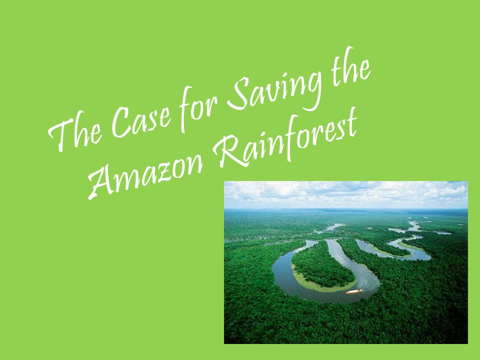 The Case for Saving the Amazon Rainforest