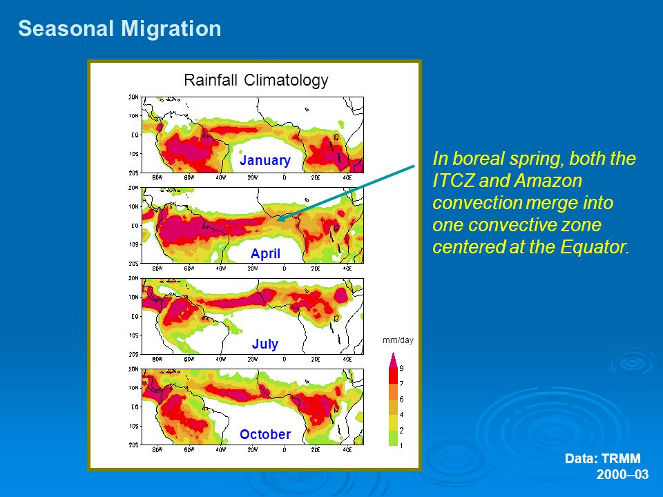 Rainfall Climatology Data: TRMM 2000–03 Seasonal Migration January April July October In boreal spring, both the ITCZ and Amazon convection merge into one convective zone centered at the Equator.