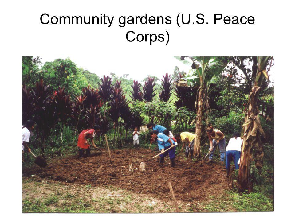 Community gardens (U.S. Peace Corps)