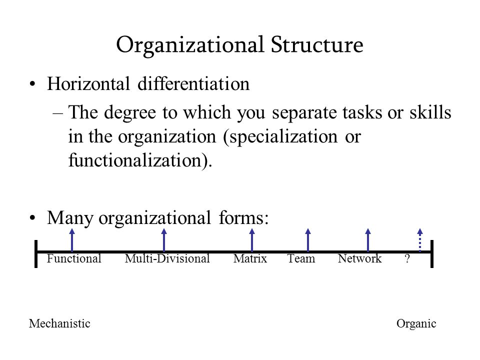 Organizational Structure Horizontal differentiation –The degree to which you separate tasks or skills in the organization (specialization or functionalization).
