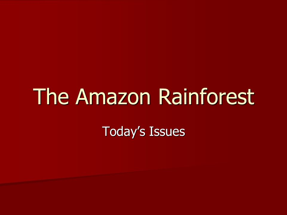 The Amazon Rainforest Today's Issues