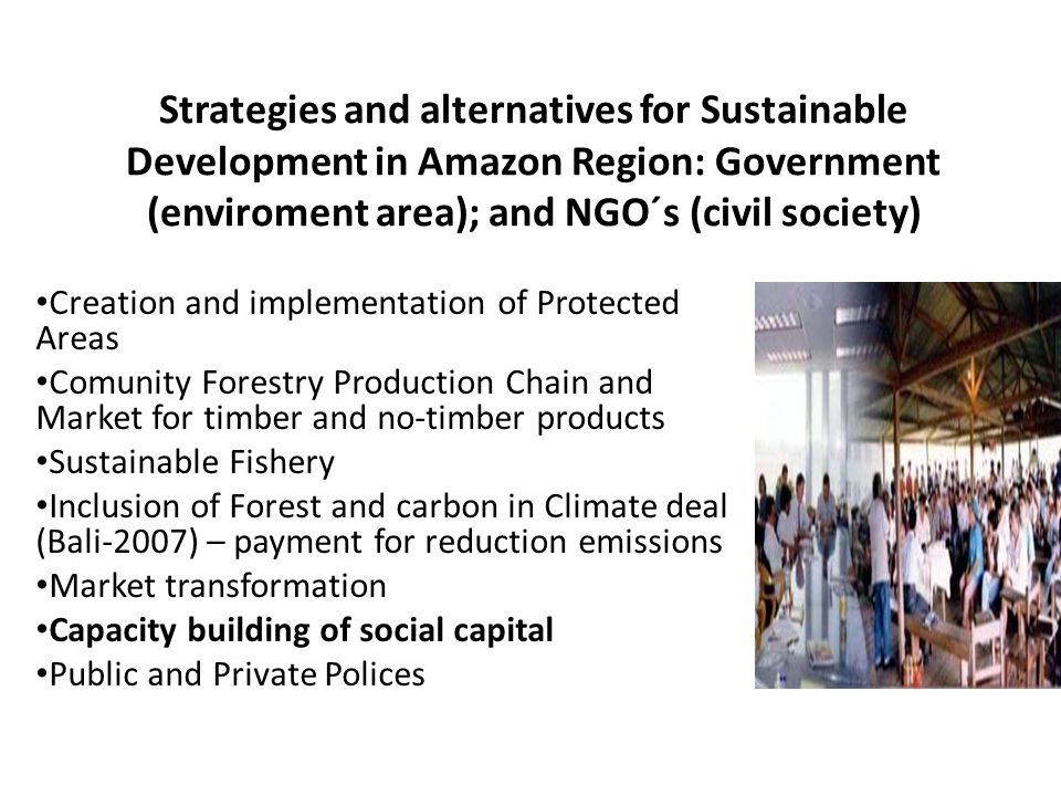 Strategies and alternatives for Sustainable Development in Amazon Region: Government (enviroment area); and NGO´s (civil society) Creation and impleme