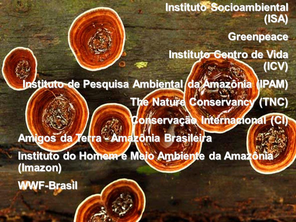 Instituto Socioambiental (ISA) Greenpeace Instituto Centro de Vida (ICV) Instituto Centro de Vida (ICV) Instituto de Pesquisa Ambiental da Amazônia (I