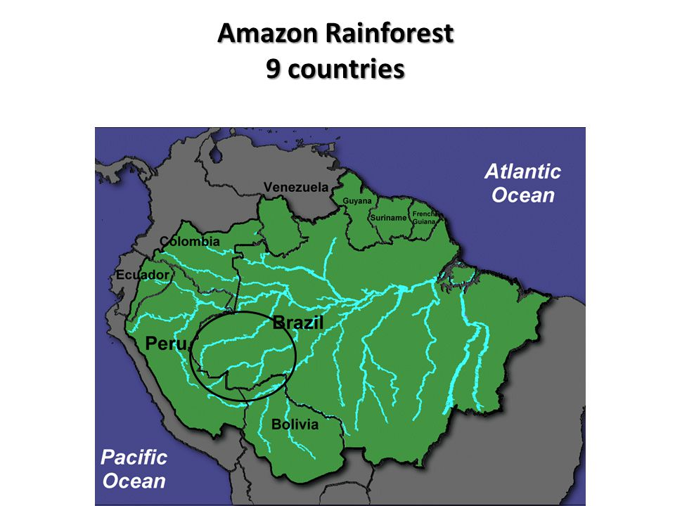 Amazon Rainforest 9 countries