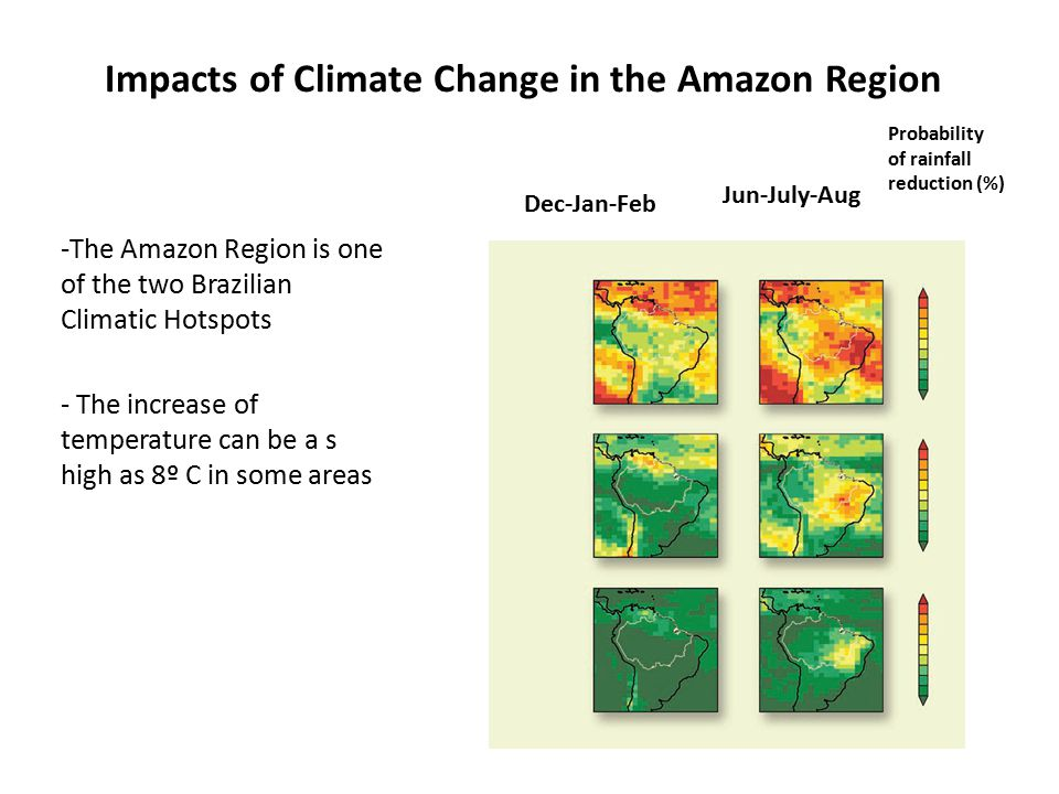 Source: Brazilian Forest Service (2008)