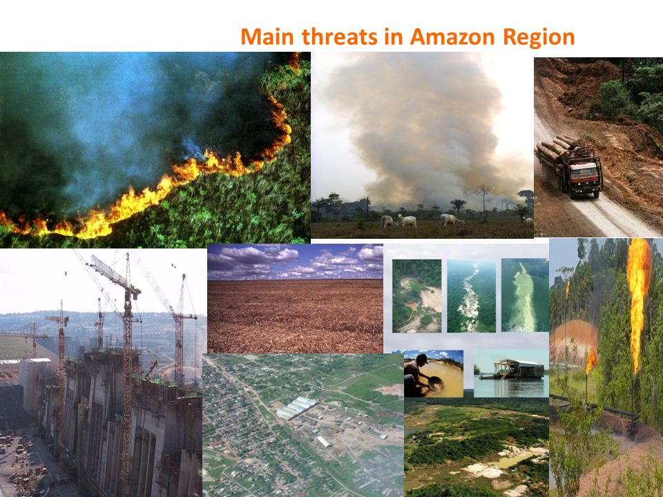 Main threats in Amazon Region