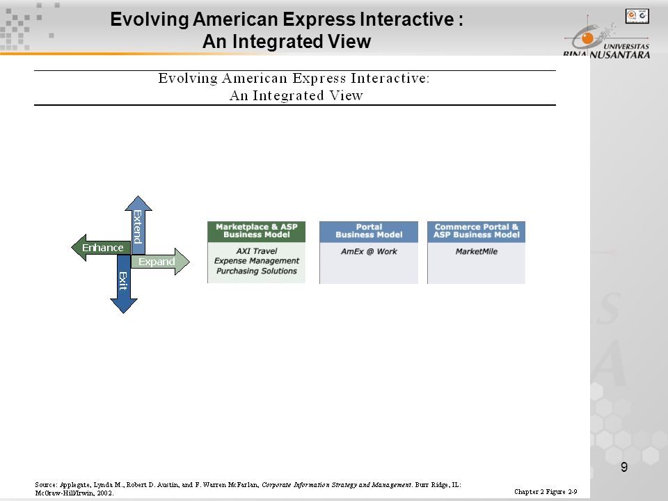 9 Evolving American Express Interactive : An Integrated View
