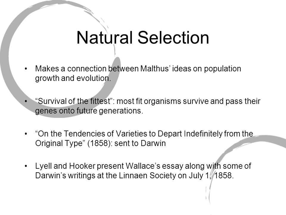 Natural Selection Makes a connection between Malthus' ideas on population growth and evolution.