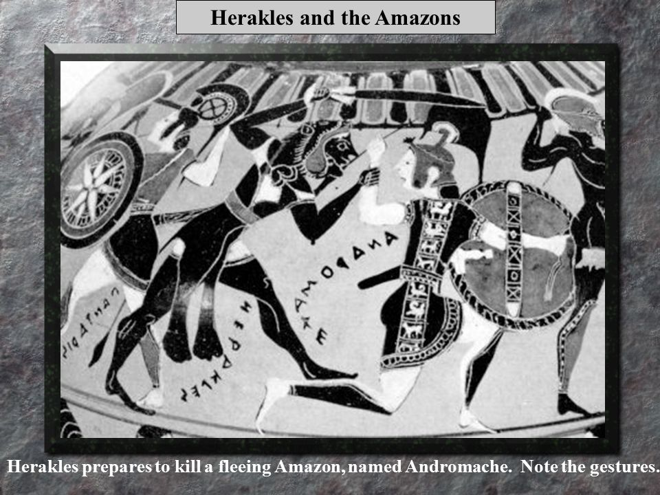 Herakles and the Amazons Herakles prepares to kill a fleeing Amazon, named Andromache.