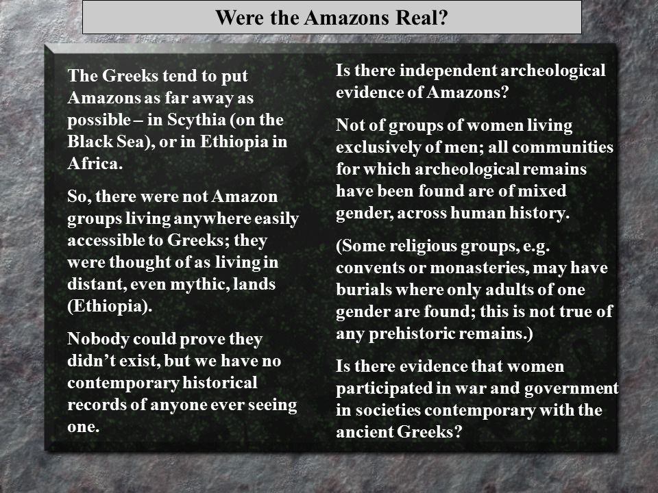 Were the Amazons Real.