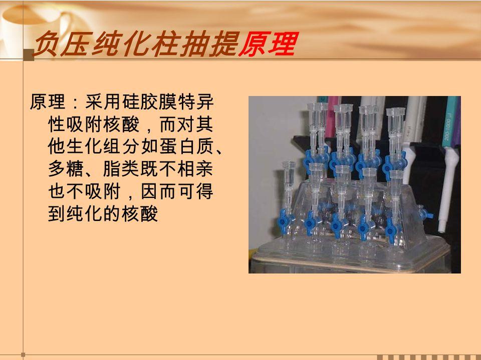 负压纯化柱抽提原理 原理:采用硅胶膜特异 性吸附核酸,而对其 他生化组分如蛋白质、 多糖、脂类既不相亲 也不吸附,因而可得 到纯化的核酸