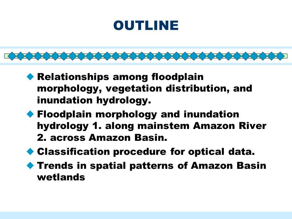 OUTLINE  Relationships among floodplain morphology, vegetation distribution, and inundation hydrology.