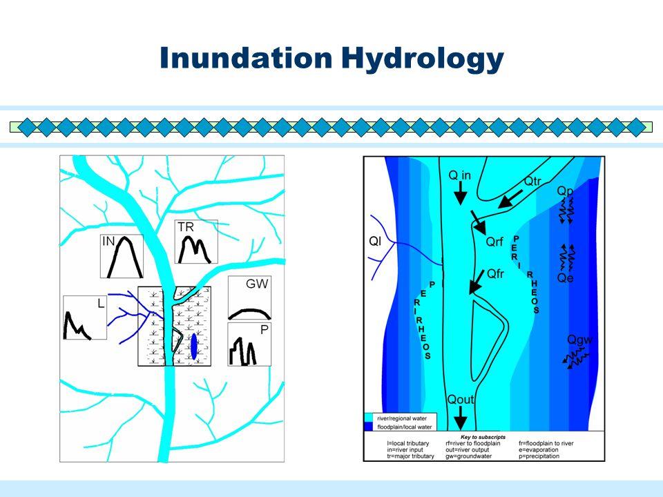 Inundation Hydrology