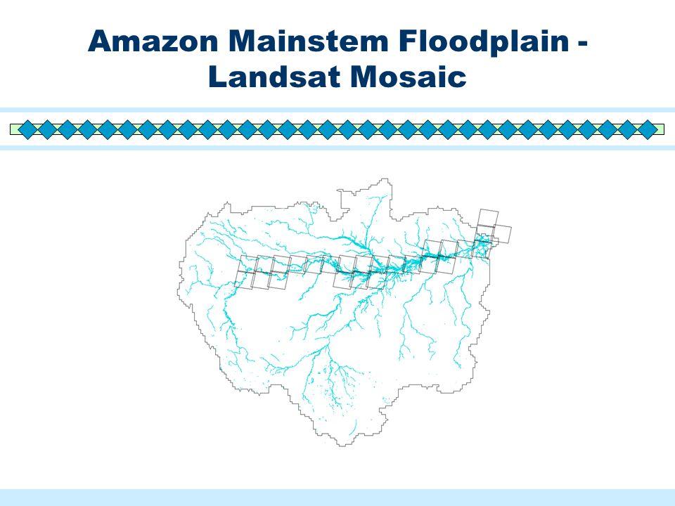 Amazon Mainstem Floodplain - Landsat Mosaic