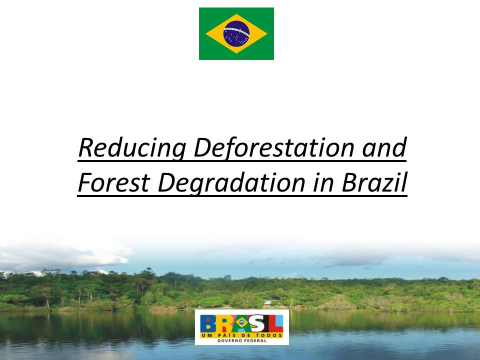 Reducing Deforestation and Forest Degradation in Brazil