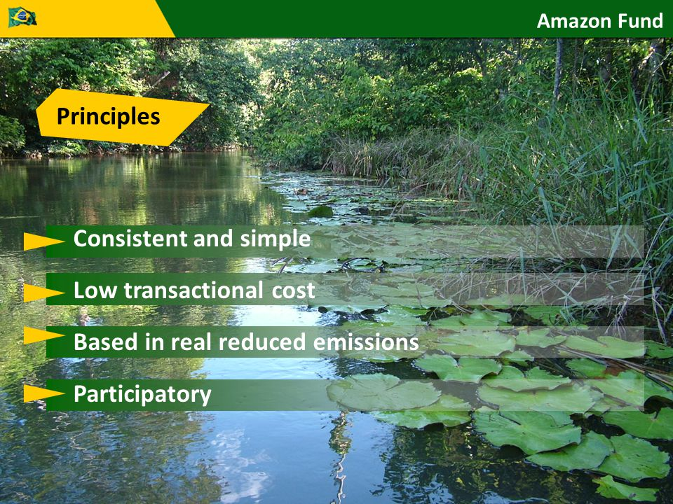 Principles Consistent and simple Low transactional cost Based in real reduced emissions Participatory Amazon Fund