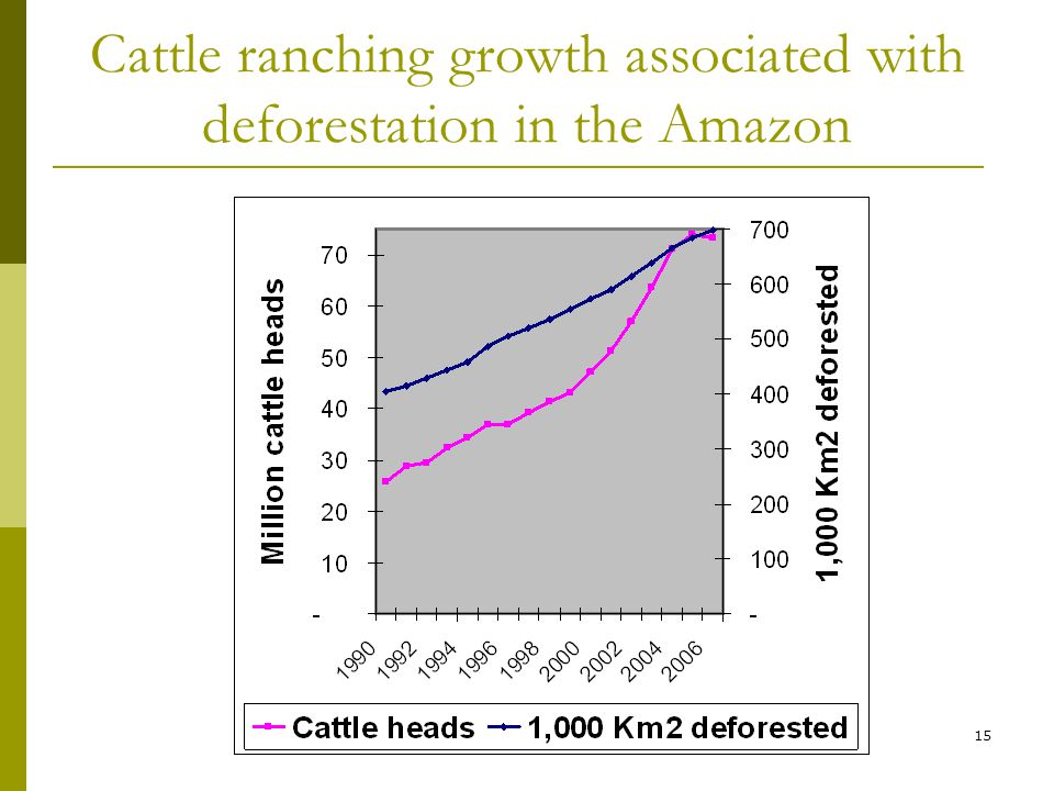 15 Cattle ranching growth associated with deforestation in the Amazon