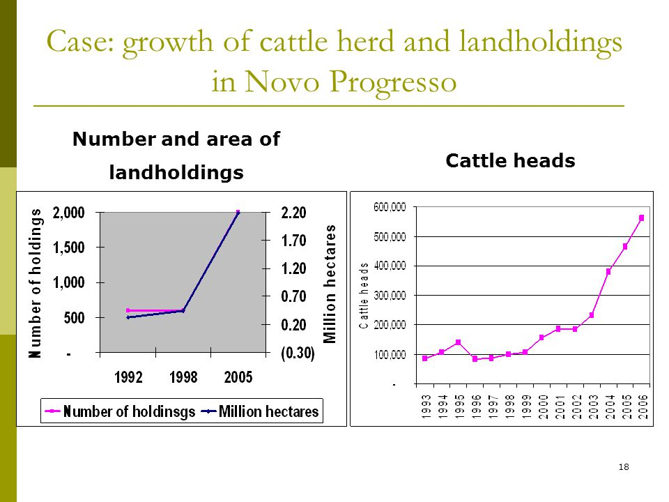 18 Case: growth of cattle herd and landholdings in Novo Progresso Number and area of landholdings Cattle heads