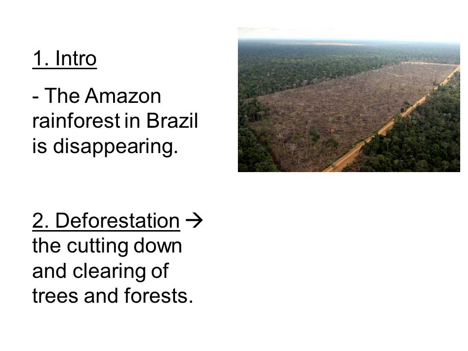 1. Intro - The Amazon rainforest in Brazil is disappearing. 2. Deforestation  the cutting down and clearing of trees and forests.
