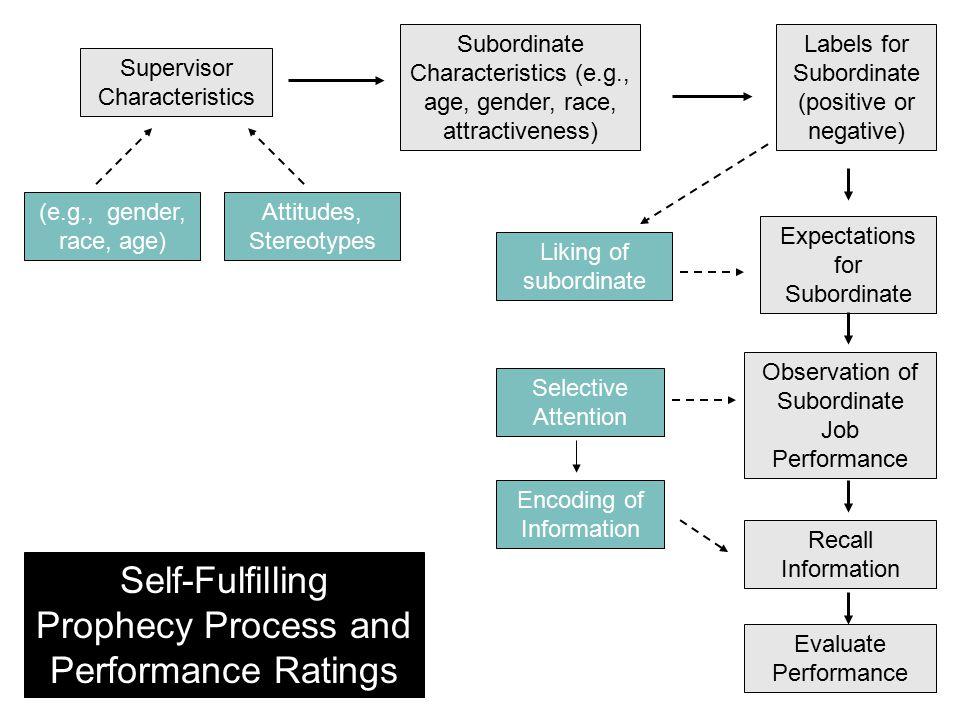 Supervisor Characteristics Subordinate Characteristics (e.g., age, gender, race, attractiveness) Labels for Subordinate (positive or negative) Expecta