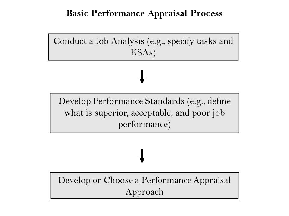 Basic Performance Appraisal Process Conduct a Job Analysis (e.g., specify tasks and KSAs) Develop Performance Standards (e.g., define what is superior
