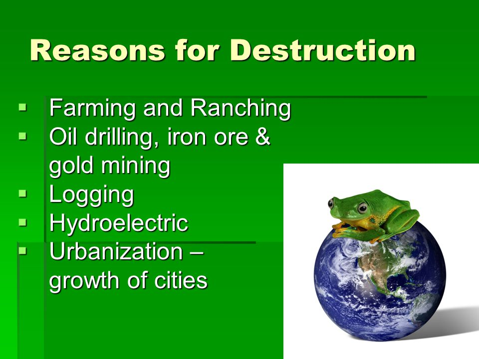Reasons for Destruction  Farming and Ranching  Oil drilling, iron ore & gold mining  Logging  Hydroelectric  Urbanization – growth of cities