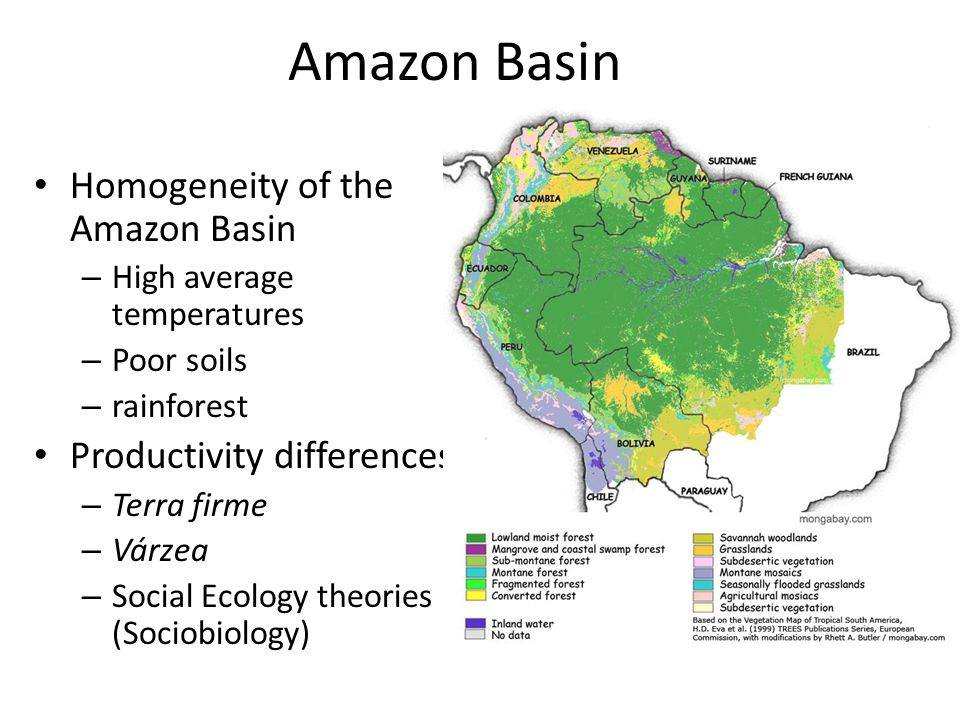 Amazon Basin Homogeneity of the Amazon Basin – High average temperatures – Poor soils – rainforest Productivity differences – Terra firme – Várzea – Social Ecology theories (Sociobiology)