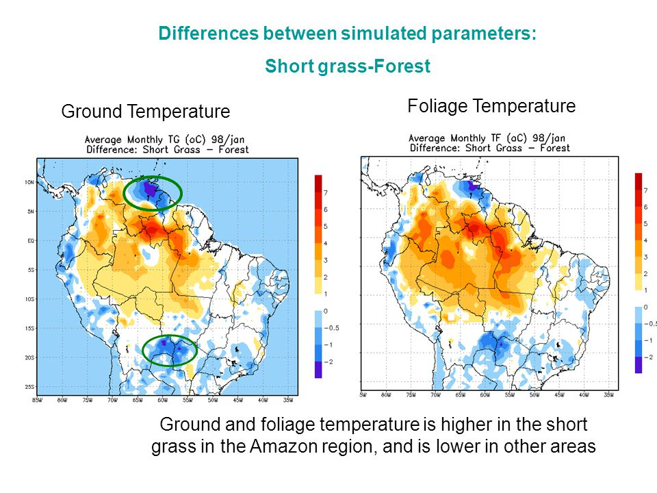 Foliage Temperature Ground Temperature Ground and foliage temperature is higher in the short grass in the Amazon region, and is lower in other areas Differences between simulated parameters: Short grass-Forest