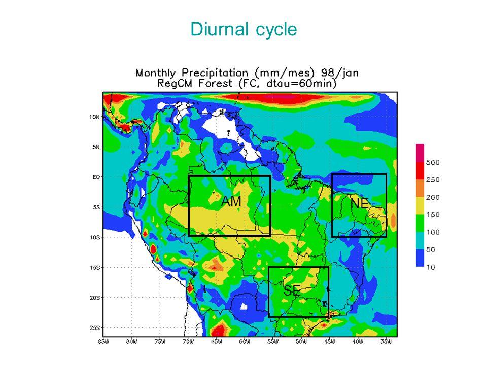 Diurnal cycle AM NE SE